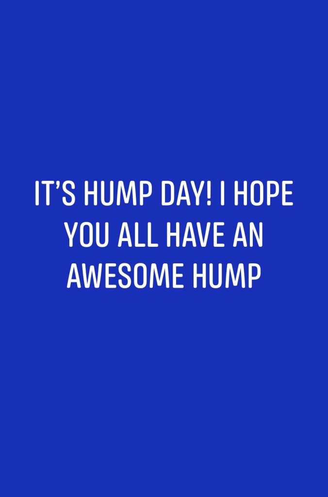 HumpDay Funny 😄